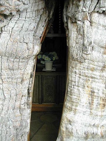 まるで妖精の家!フランス、ノルマンディ地方の小さな村にある巨木の中に作られた「オークの礼拝堂」